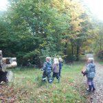 幸福世界一の国デンマーク視察☆森の幼稚園とフォルケホイスコーレ