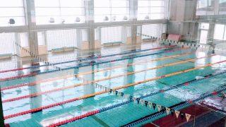 ささっとプールで泳いできました【トレーニング日記】