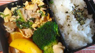豚ニラ玉のオイスターソース炒め弁当【お弁当日記】