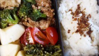 豚肉とブロッコリーのガラムマサラ風味弁当【お弁当日記】