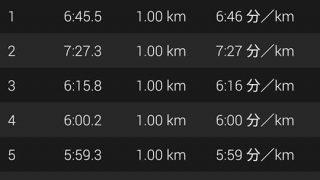 6分/kmペースのジョギングが続かない【トレ-ニング日記】
