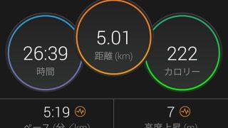 ペース走(5km+3km)。身体がちょっとラクになってきました【トレーニング日記】