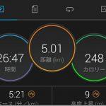 骨盤回しながらペース走(5km×2本)【トレーニング日記】