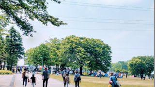 1日たっぷり楽しめる親子イベント「mamasky party(ママスキーパーティ) 2019 in太閤山ランド」見学レポート