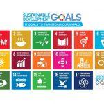 「SDGs」はビジネスチャンス。地方の中小企業が取り組み、情報発信するメリット